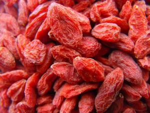fructe-Goji-slabescu.ro_