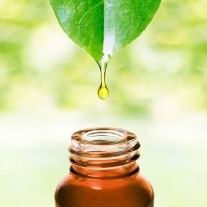 I-Grande-3275-qu-est-ce-que-l-aromatherapie-notre-definition.net