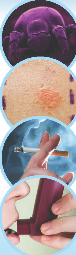 Asthme Fondation du souffle_Page_3