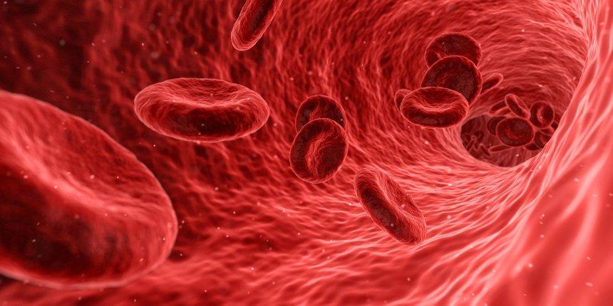 blood-1813410_1920
