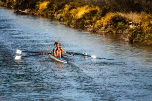 rowing-898008_1920